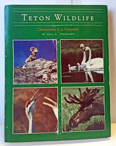 Teton Wildlife: Observations By a Naturalist