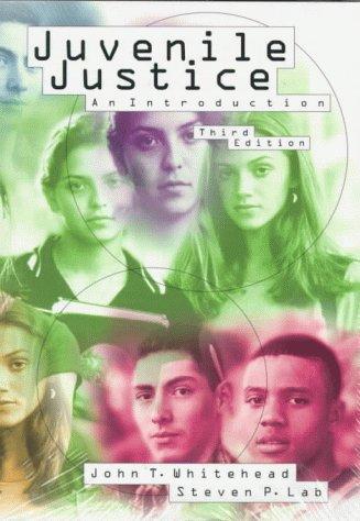 9780870849046: Juvenile Justice: An Introduction