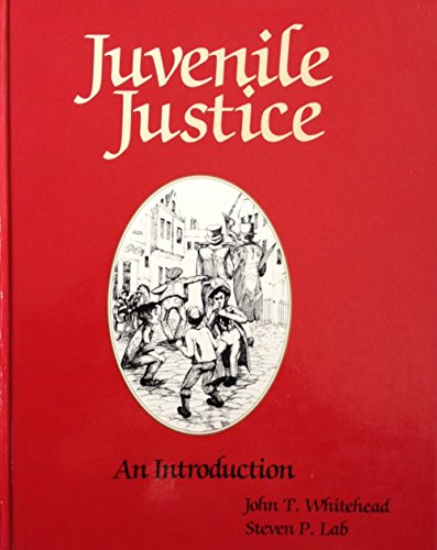 9780870849367: Juvenile Justice: An Introduction