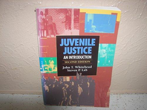 9780870849398: Juvenile Justice: An Introduction
