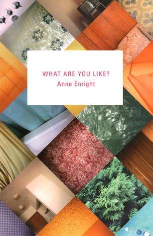9780871138163: What Are You Like?: A Novel