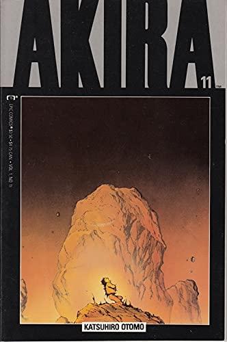 9780871355867: Akira #11: Akira Rising