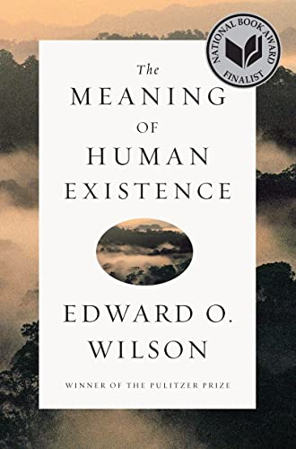 9780871401007: The Meaning of Human Existence