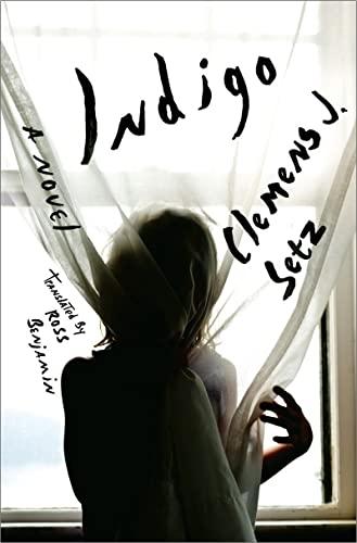 Indigo: A Novel: Setz, Clemens J.