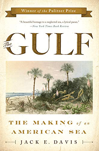 9780871408662: The Gulf: The Making of An American Sea