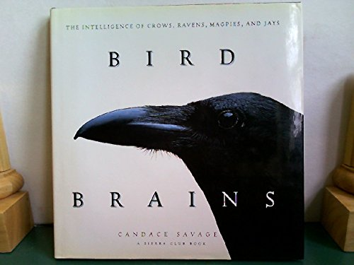 9780871563798: Bird Brains: The Intelligence of Crows, Ravens, Magpies, and Jays