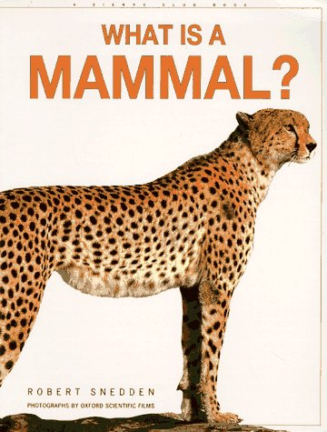 9780871569295: What is a Mammal?