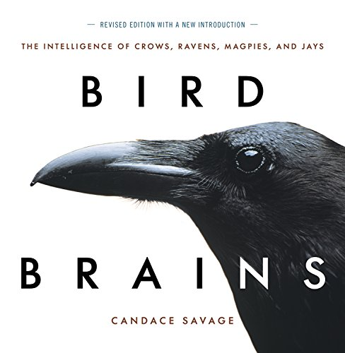 Bird Brains: The Intelligence of Crows, Ravens, Magpies, and Jays: Savage, Candace