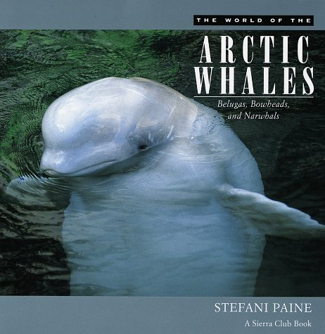 9780871569578: The World of the Arctic Whales: Belugas, Bowheads, and Narwhals