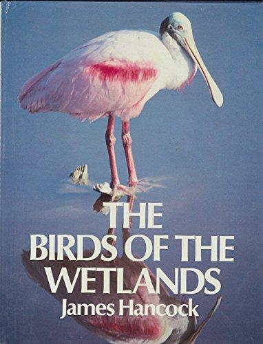 9780871968951: Birds of Wetlands James Hancock Ff