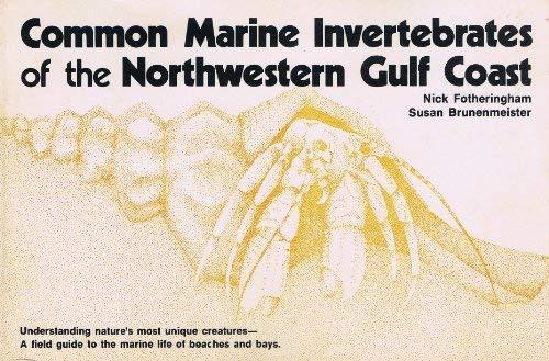 Common Marine Invertebrates of the North-western Gulf Coast: Fotheringham, Nick, Brunenmeister, ...