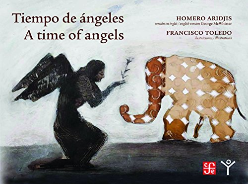 9780872865648: Time of Angels