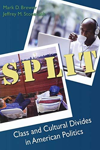 9780872892989: Split: Class and Cultural Divides In American Politics