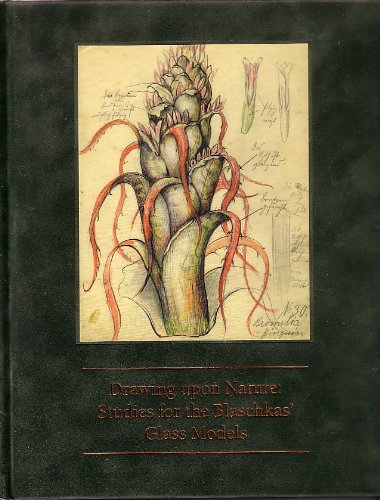 9780872901667: DRAWING UPON NATURE: Studies for the Blaschkas' Glass Models