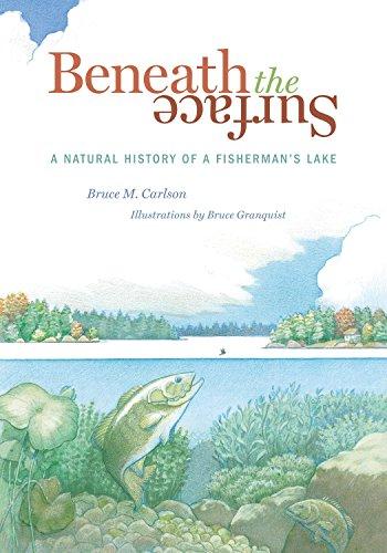 9780873515788: Beneath the Surface: A Natural History of a Fisherman's Lake