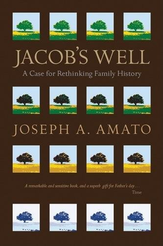 Jacob's Well: A Case for Rethinking Family: Amato, Joseph A