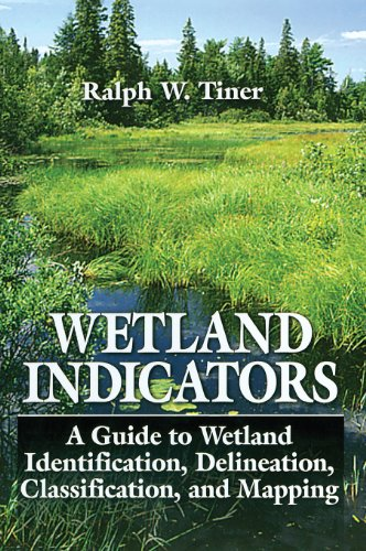 9780873718929: Wetland Indicators: A Guide to Wetland Identification, Delineation, Classification, and Mapping
