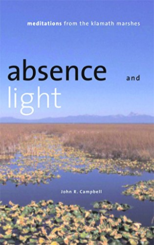 9780874174960: Absence And Light: Meditations From The Klamath Marshes (Environmental Arts and Humanities)