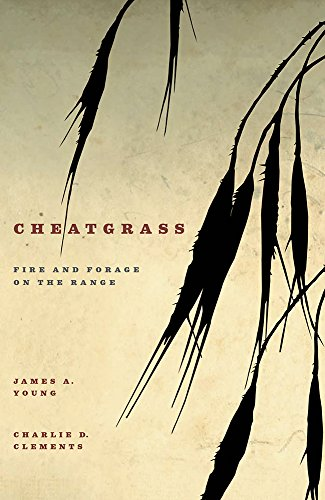 Cheatgrass: Fire and Forage on the Range (Hardback): James A Young, Charlie D Clements