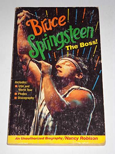 9780874490497: Bruce Springsteen