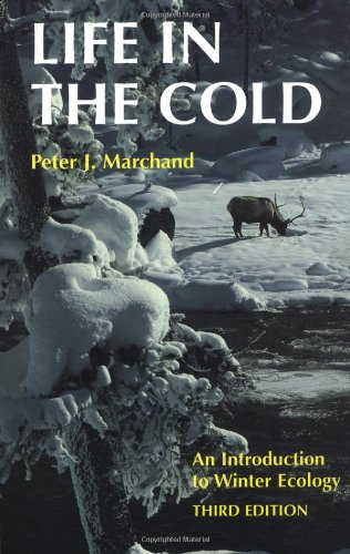 9780874517859: Life in the Cold: An Introduction to Winter Ecology