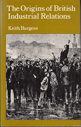 9780874717136: The origins of British industrial relations: The nineteenth century experience (Croom Helm social history series)