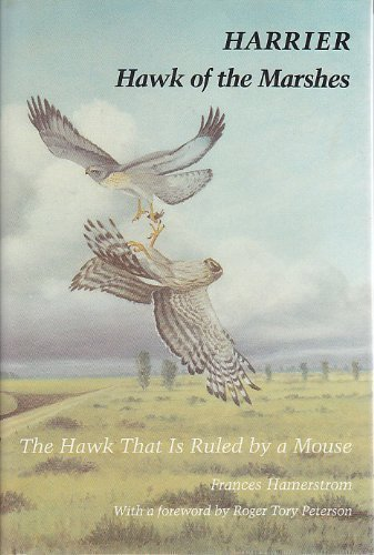 9780874745382: Harrier, Hawk of the Marshes: The Hawk That is Ruled by a Mouse