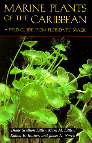 9780874746075: Marine Plants of the Caribbean. A Field Guide from Florida to Brazil