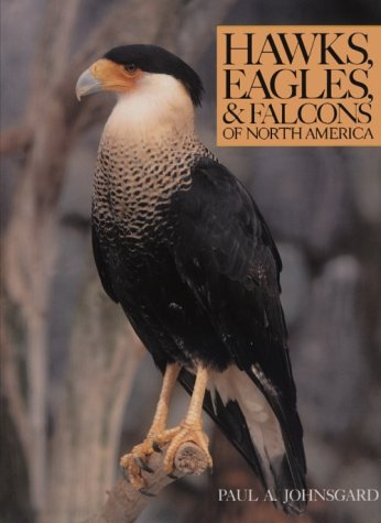 Hawks, Eagles & Falcons of North America: Johnsgard, Paul A.