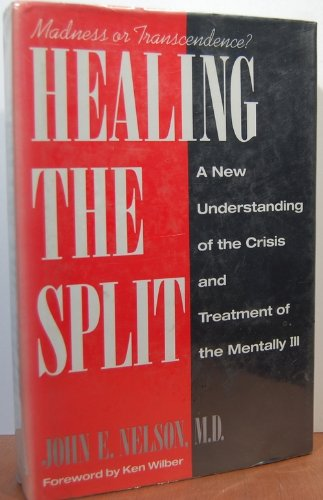 9780874775686: Healing the Split: Madness or Transcendence? A New Understanding of the Crisis and Treatment of the Mentally Ill