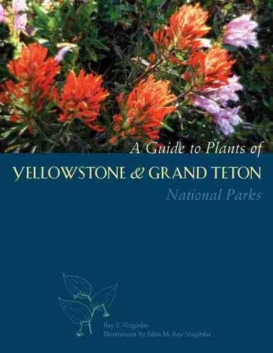 A Guide to Plants of Yellowstone and: Vizgirdas, Ray S