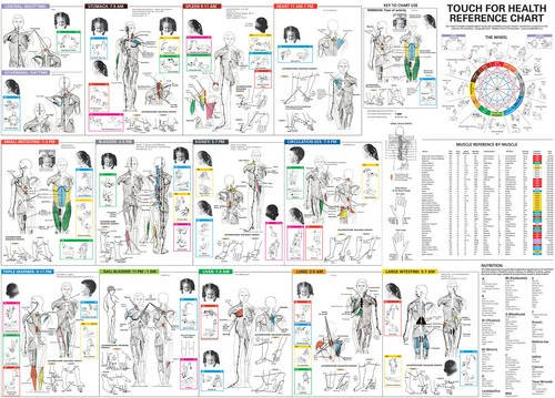 9780875167732: Touch for Health Reference Chart