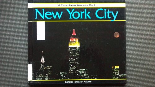 9780875183848: New York City (Downtown America Book)