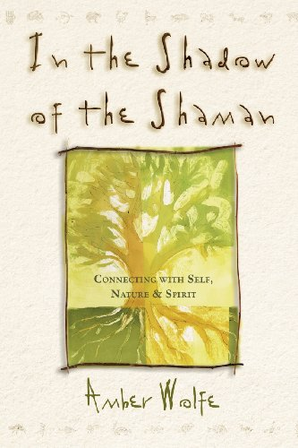 9780875428888: In the Shadow of the Shaman: Connecting with Self, Nature & Spirit (Llewellyn's New World Spirituality)