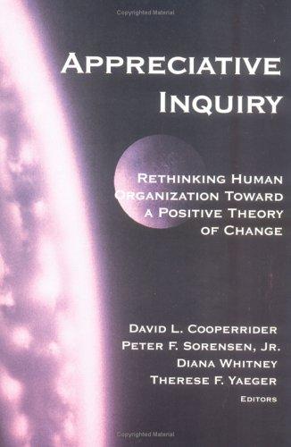 9780875639314: Appreciative Inquiry: Rethinking Human Organization Toward a Positive Theory of Change