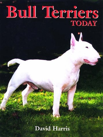 9780876050767: Bull Terriers Today