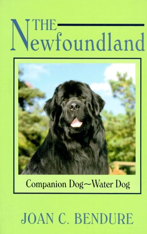 The Newfoundland: Companion Dog - Water Dog