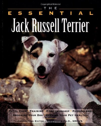 9780876053447: Essential Jack Russell Terrier (Essential Guide)