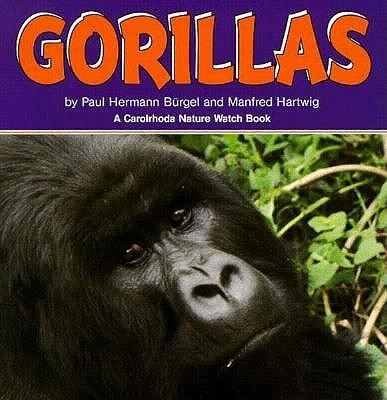 Gorillas (A Carolrhoda Nature Watch Book): Paul Hermann Burgel;
