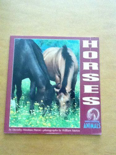 Horses (Understanding Animals): Dorothy Hinshaw Patent