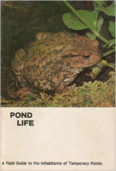 Pond Life Masters, Charles Otto