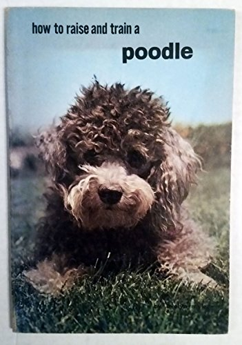 How to Raise & Train a Poodle
