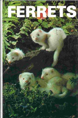 Ferrets: Winstead, Wendy