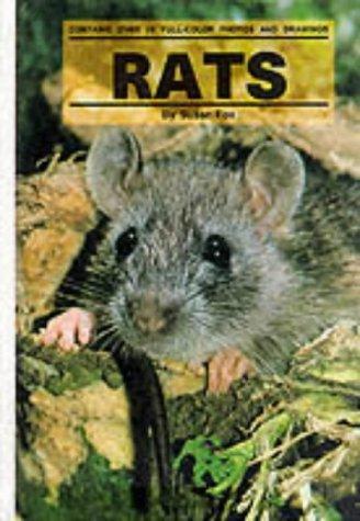 9780876669334: Rats (Small Animals)