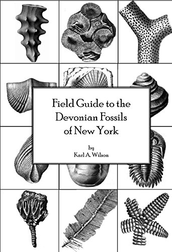 9780877105060: Field Guide to the Devonian Fossils of New York