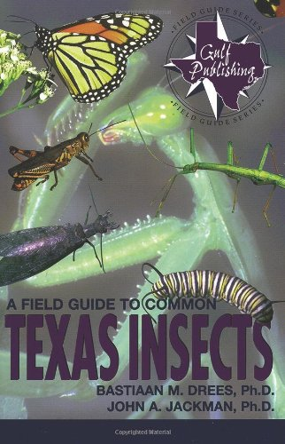 9780877192633: A Field Guide to Common Texas Insects (The Geological Field Guide Series)