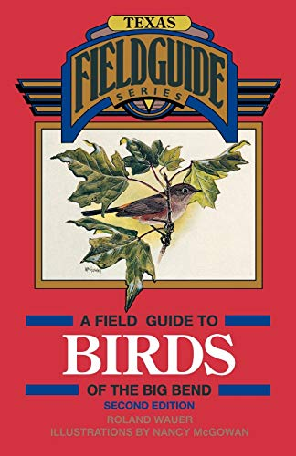9780877192718: A Field Guide to Birds of the Big Bend (Gulf Publishing Field Guides)