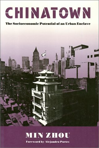 9780877229346: Chinatown: The Socioeconomic Potential of an Urban Enclave (Conflicts In Urban & Regional)
