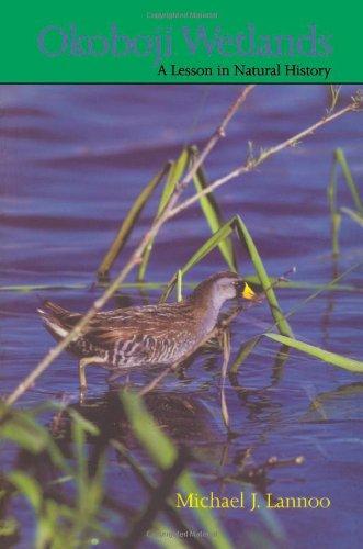 9780877455332: Okoboji Wetlands: A Lesson in Natural History (Bur Oak Book)