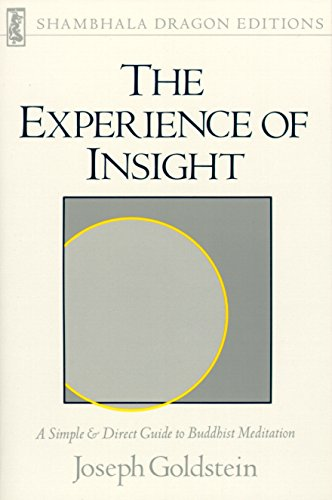 9780877732266: The Experience Of Insight: Simple and Direct Guide to Buddhist Meditation (Shambala Dragon Editions)